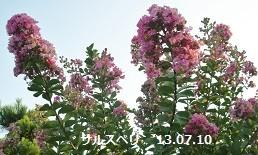 f:id:mikawakinta63:20130709185857j:image:right