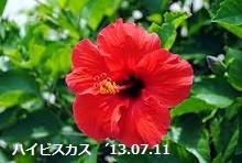 f:id:mikawakinta63:20130711130925j:image:right