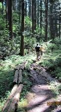 f:id:mikawakinta63:20130822101600j:image