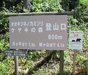 f:id:mikawakinta63:20130822102341j:image