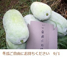 f:id:mikawakinta63:20130831191149j:image:left