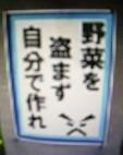 f:id:mikawakinta63:20130904033957j:image:right