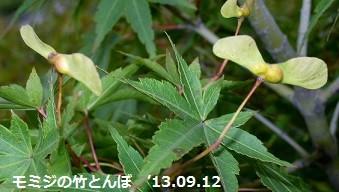 f:id:mikawakinta63:20130906195423j:image