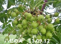 f:id:mikawakinta63:20130907203109j:image:left
