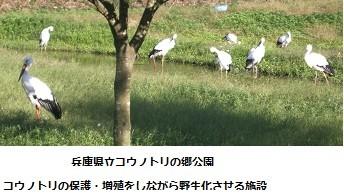 f:id:mikawakinta63:20131001045913j:image:right