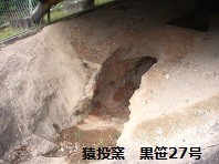 f:id:mikawakinta63:20131022030136j:image:right