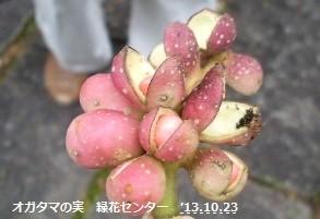 f:id:mikawakinta63:20131022234442j:image:right
