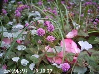 f:id:mikawakinta63:20131024231059j:image:left