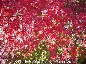 f:id:mikawakinta63:20131126045404j:image:left