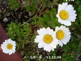 f:id:mikawakinta63:20131224021644j:image:right