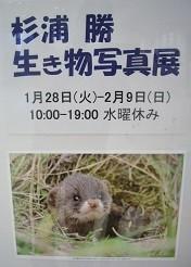 f:id:mikawakinta63:20140130030321j:image:left