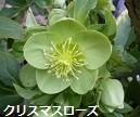 f:id:mikawakinta63:20140301034252j:image:left