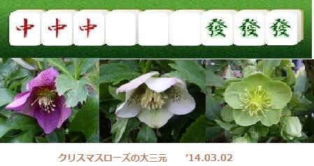 f:id:mikawakinta63:20140302155401p:image