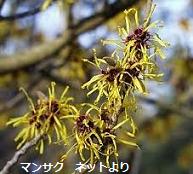 f:id:mikawakinta63:20140313133726p:image:left