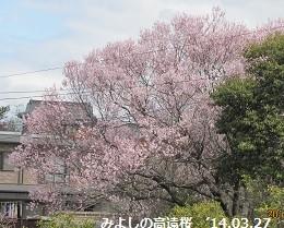 f:id:mikawakinta63:20140327111804j:image:left
