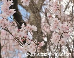 f:id:mikawakinta63:20140327112140j:image:right
