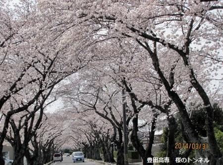 f:id:mikawakinta63:20140331132541j:image