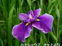 f:id:mikawakinta63:20140513160448p:image:left