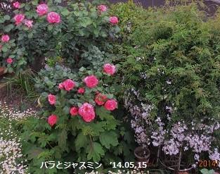 f:id:mikawakinta63:20140515125152j:image:left