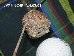 f:id:mikawakinta63:20140706002418j:image:right