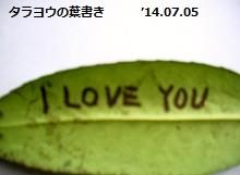 f:id:mikawakinta63:20140708062952j:image:right
