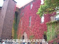 f:id:mikawakinta63:20141005062214j:image:left