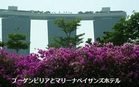 f:id:mikawakinta63:20141017012031j:image:left
