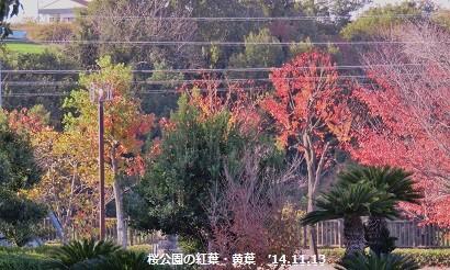 f:id:mikawakinta63:20141113081440j:image