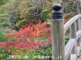 f:id:mikawakinta63:20141116095418j:image:left