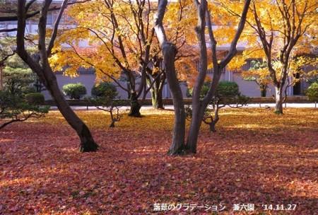f:id:mikawakinta63:20141127095702j:image