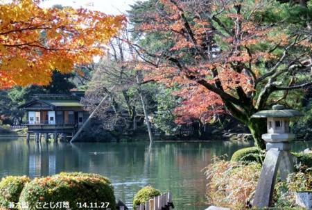 f:id:mikawakinta63:20141127101603j:image