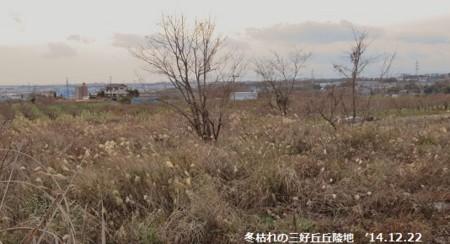 f:id:mikawakinta63:20141221161403j:image