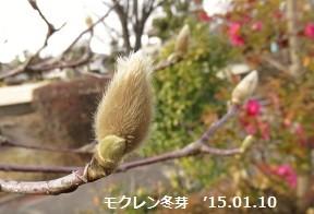f:id:mikawakinta63:20150110144052j:image:right