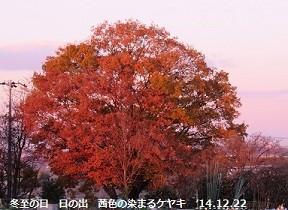f:id:mikawakinta63:20150122111301j:image:left