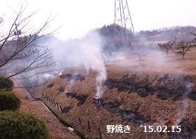 f:id:mikawakinta63:20150215204601j:image:left