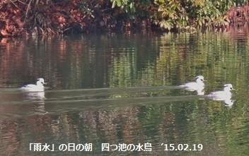 f:id:mikawakinta63:20150219175523j:image:right