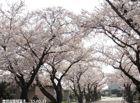 f:id:mikawakinta63:20150401224203j:image