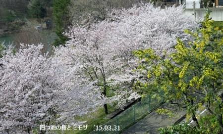 f:id:mikawakinta63:20150401224519j:image