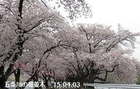 f:id:mikawakinta63:20150403235410j:image:right