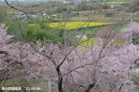 f:id:mikawakinta63:20150407200248j:image