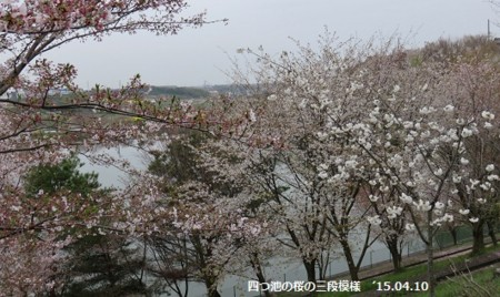 f:id:mikawakinta63:20150410170151j:image