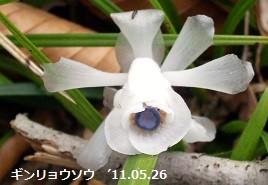 f:id:mikawakinta63:20150419224845j:image:right