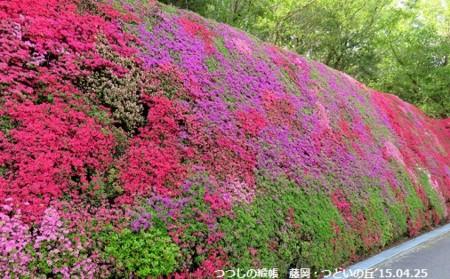 f:id:mikawakinta63:20150427140326j:image