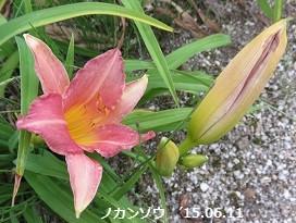 f:id:mikawakinta63:20150612143407j:image:left