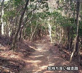 f:id:mikawakinta63:20150630215052j:image:left