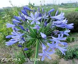 f:id:mikawakinta63:20150703143401j:image:left