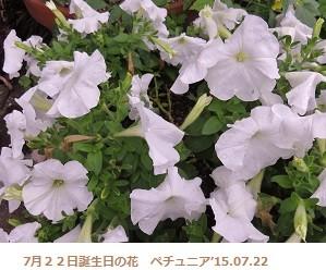 f:id:mikawakinta63:20150723144921j:image:left