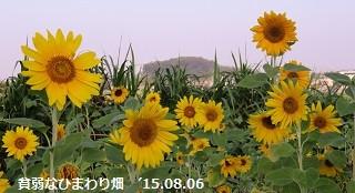 f:id:mikawakinta63:20150806145621j:image:left