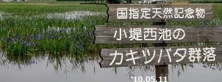 f:id:mikawakinta63:20151027195941j:image:right