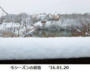 f:id:mikawakinta63:20160120144717j:image:right